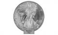 American Silver Eagle 1 Ounce Coin Random Year