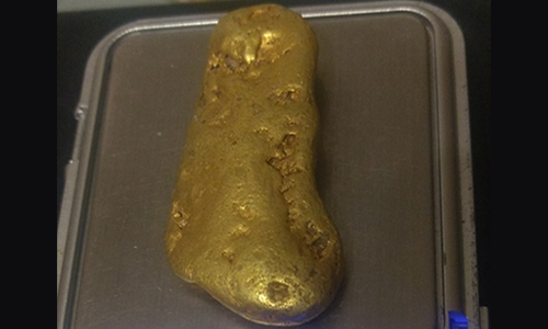 61.3 California Gold Nugget